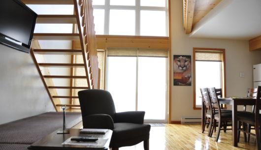 Salon et salle à dîner à aire ouverte avec grande luminosité