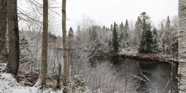 Rivière Sainte-Anne - Chalet Ours Blanc