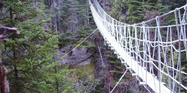 Pont suspendu dans le sentier du Ruisseau au Parc côtier