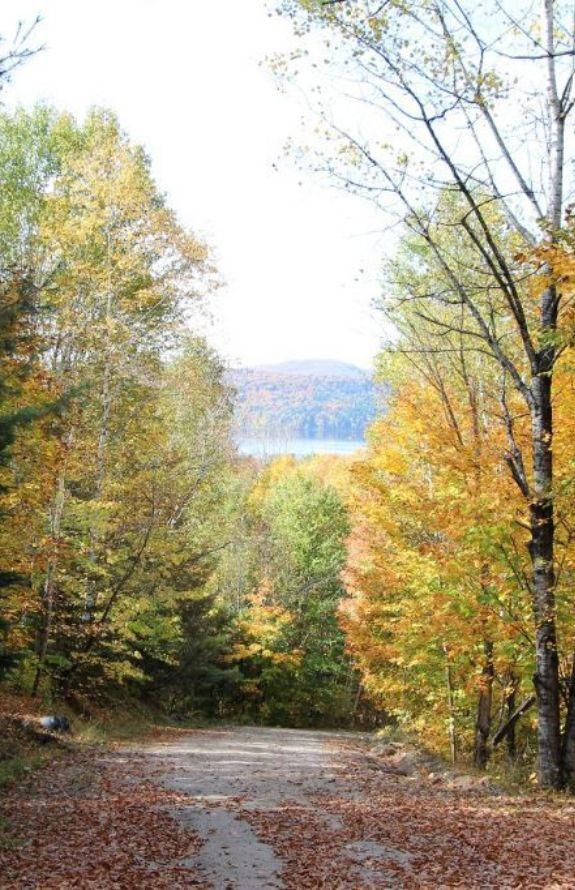 Chalet Movendo - Paysage d'automne au chalet Movendo