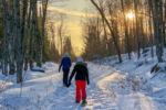 Chalet à louer Fiddler Lake Resort: Chalet 50 Chalets