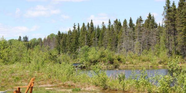 Accès au lac - Chalet Renard