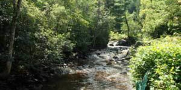 Rivière passant a l'arrière du chalet